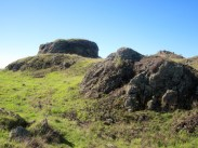stonefields_12