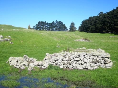 stonefields_14