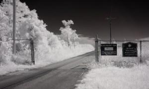 Black Walnut Point Tilghman Island Maryland Infrared Photography