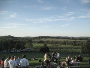 Picnic hill with view of vineyard - Arrington