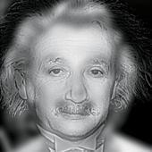 Albert Einstein or Marilyn Monroe?