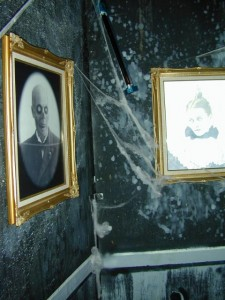Drop Portrait Hall4