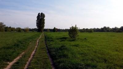 Am Mauerweg am Schichauweg in Berlin Mariendorf.