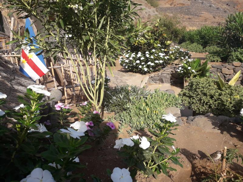 Unser Garten im Mai