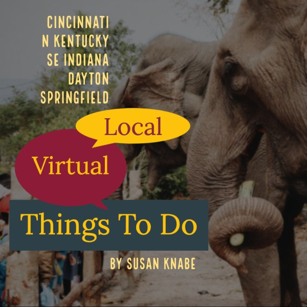 Regional Guide For Online Things To Do