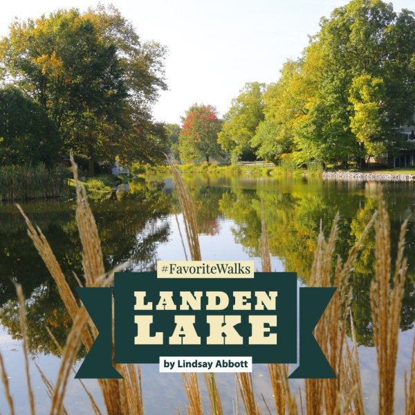 A Walk Around Landen Lake – It's A Hidden Treasure