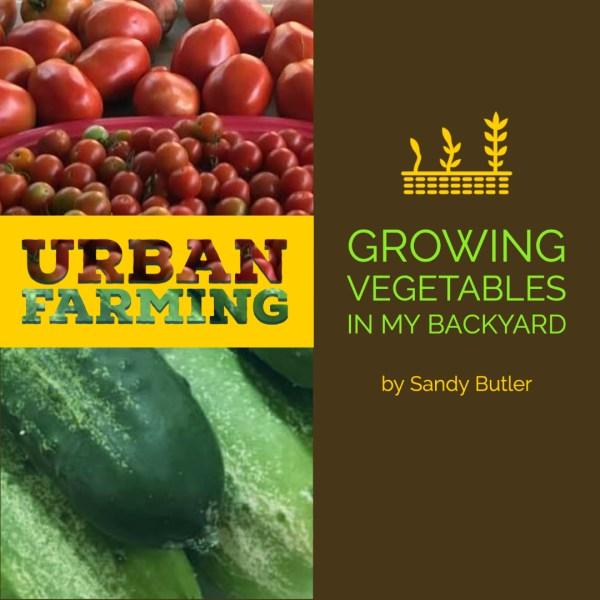 Urban Farmer – Growing Vegetables in my Backyard