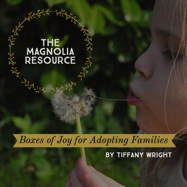 The Magnolia Resource – Brings Boxes of Joy to Local Adopting Families