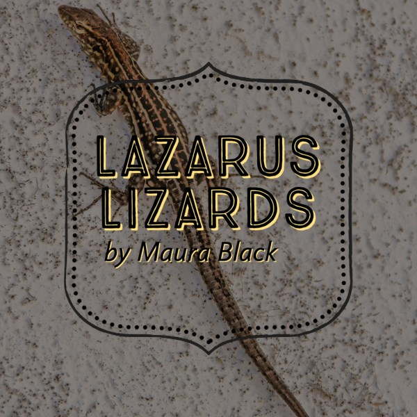 Lazarus Lizards Cincinnati