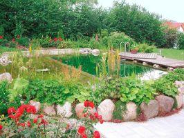Dekoration Leicht Gemacht Inspiration Naturgarten Anlegen ...