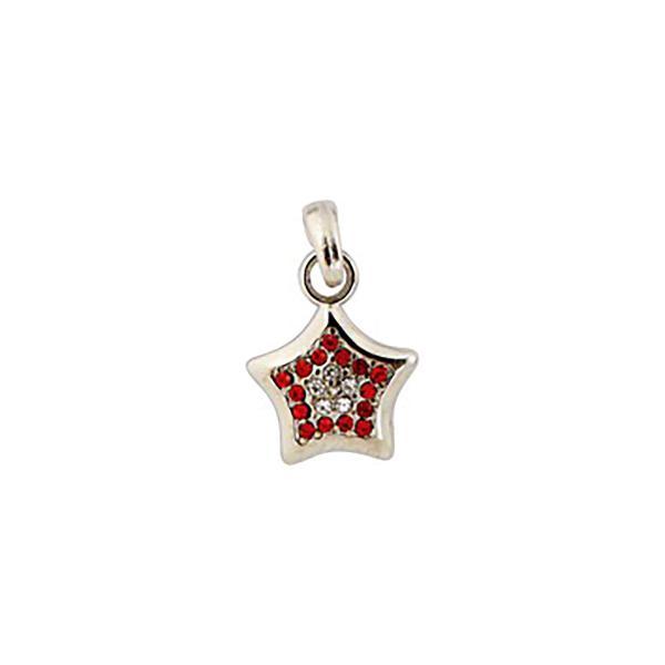 Dog Jewellery Star rot