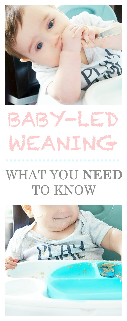 Tips for Getting Started with Baby-Led Weaning