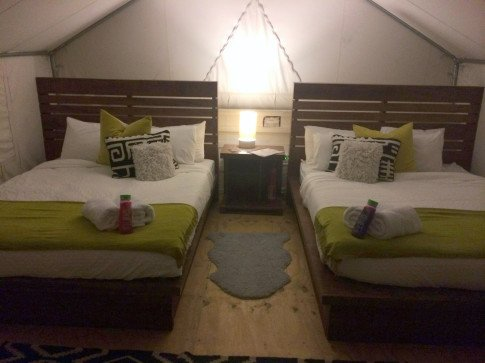 Inside Coachella Safari Tents,Herbal Essences body wash, Daily Escape, #CoachellaHerbalista