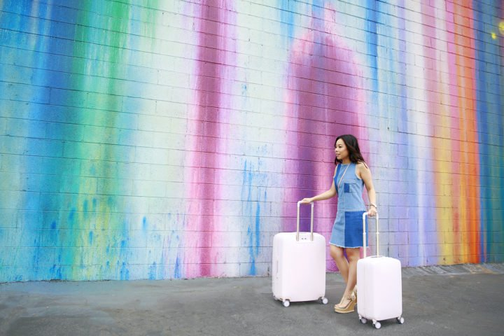 Raden Spinner Luggage Review