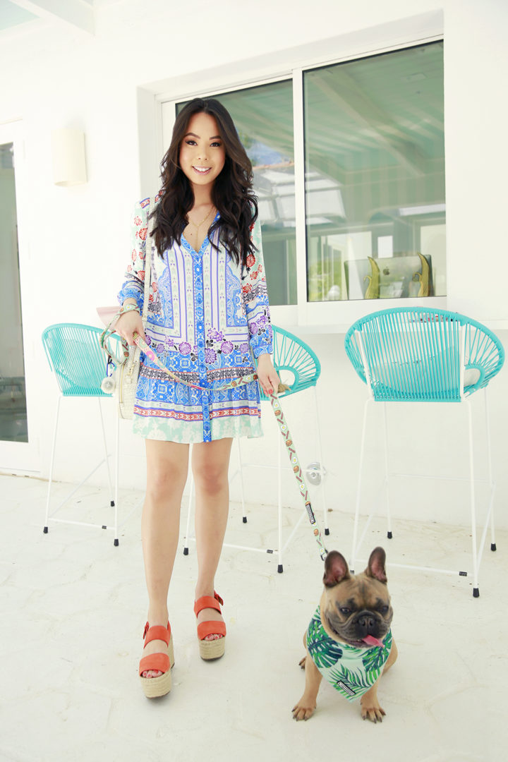 Lifestyle blogger An Dyer with French Bulldog Puppy Diesel Dyer Frenchie Puppy