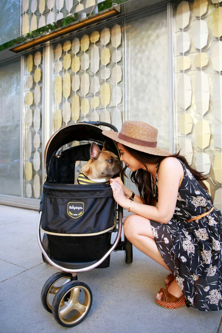 An Dyer with Diesel Frenchie Bulldog using Ibibaya Luxury Pet Dog Stroller in Beverly Hills