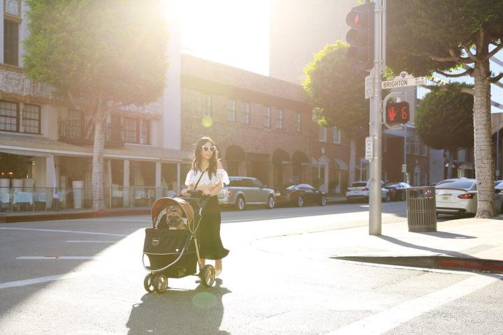 Lifestyle Fashion Blogger An Dyer White Heart Cateye Sunglasses Diesel Dyer Frenchie French Bulldog Dog Stroller Beverly Hills