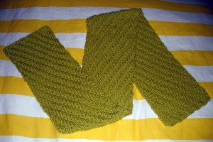Staggered Rib Scarf in Bernat Softee Chunky Grass