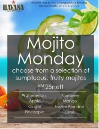 Mojito Monday Poster 13Apr15