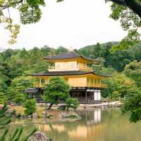 The Gold Pavilion Kyoto
