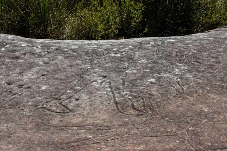 Aboriginal engravings