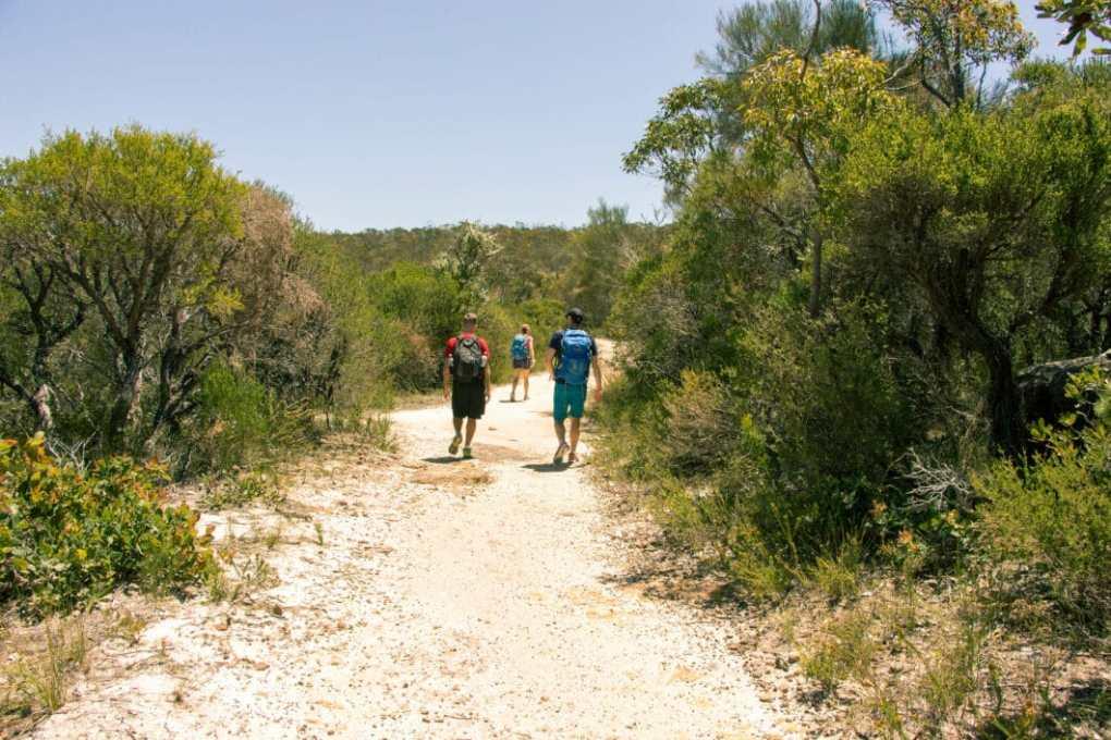 Ku-ring-gai Chase National Park