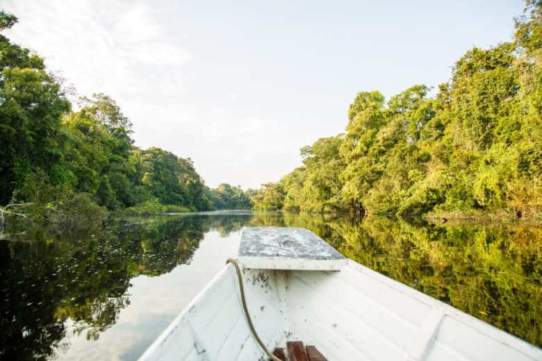 Heading to spot wildlife in the Amazon Rainforest!