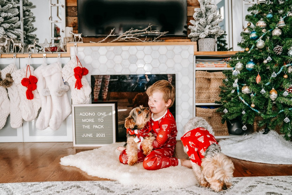 A very merry surprise! Sharing our amazing news. We're adding another baby to the mix!! #babyannouncement #pregnancyannouncement #babynumber2 #babyontheway