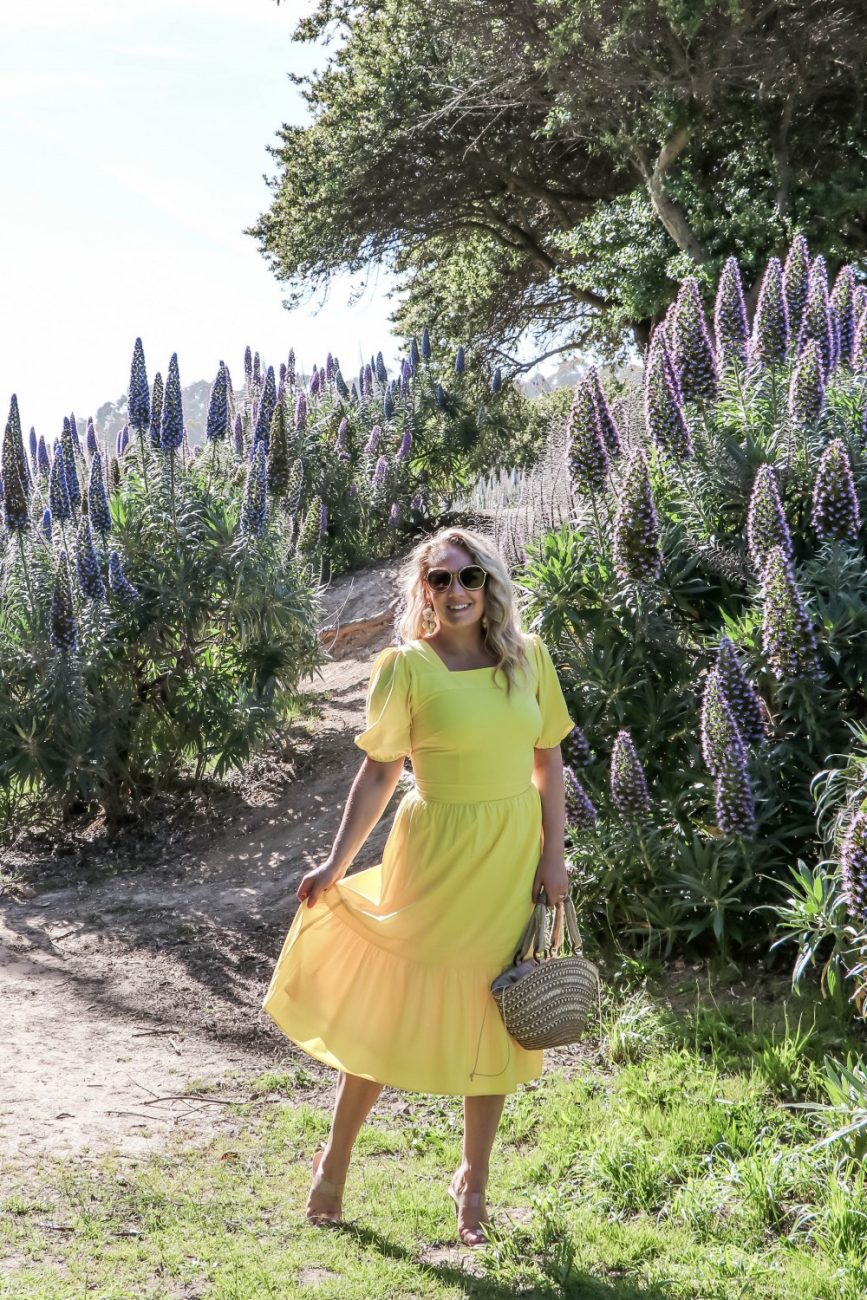 Bright and Beaming Sunshine Yellow Dresses For Spring and Summer! Head to the blog to check out more yellow dresses perfect for Mother's Day,  graduation, or wedding guest dress!  #springdress #springstyle #weddingguestattire #weddingguestdress #yellowdress #rachelparcell #outfitinspiration