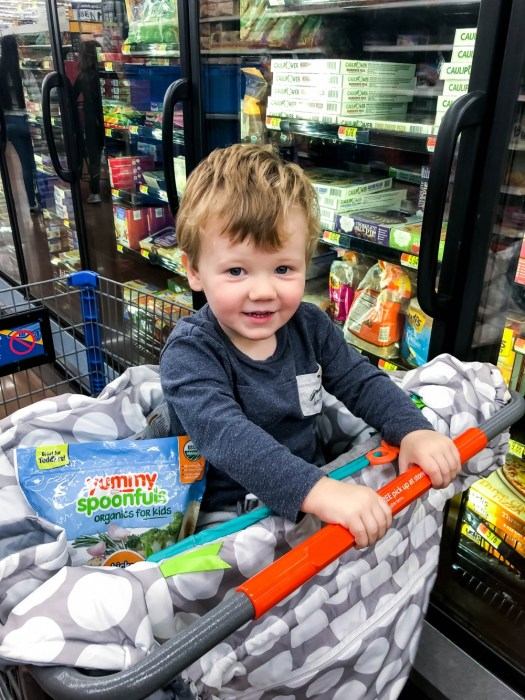Toddler Shopping for Yummy Spoonfuls for Kids Easy Snacks and Dinners - Have Need Want