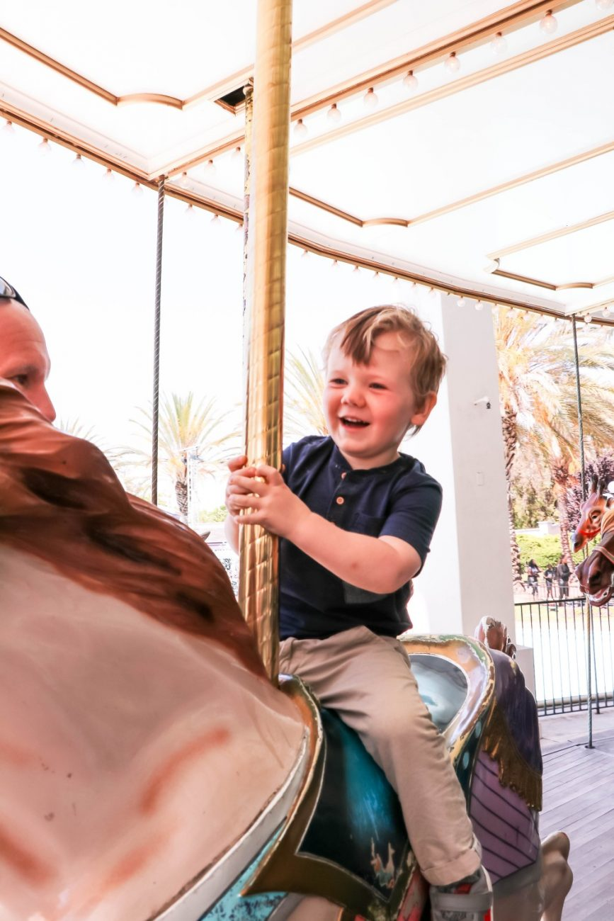 Family Fun at California's Great America! Head to the blog to check out how to maximize your time at the park and find that there's something for everyone in your family! #CAGreatAmerica #AmazingLooksLike #AmusementPark #FamilyFun #FamilyAdventures #BayAreaFamilyFun