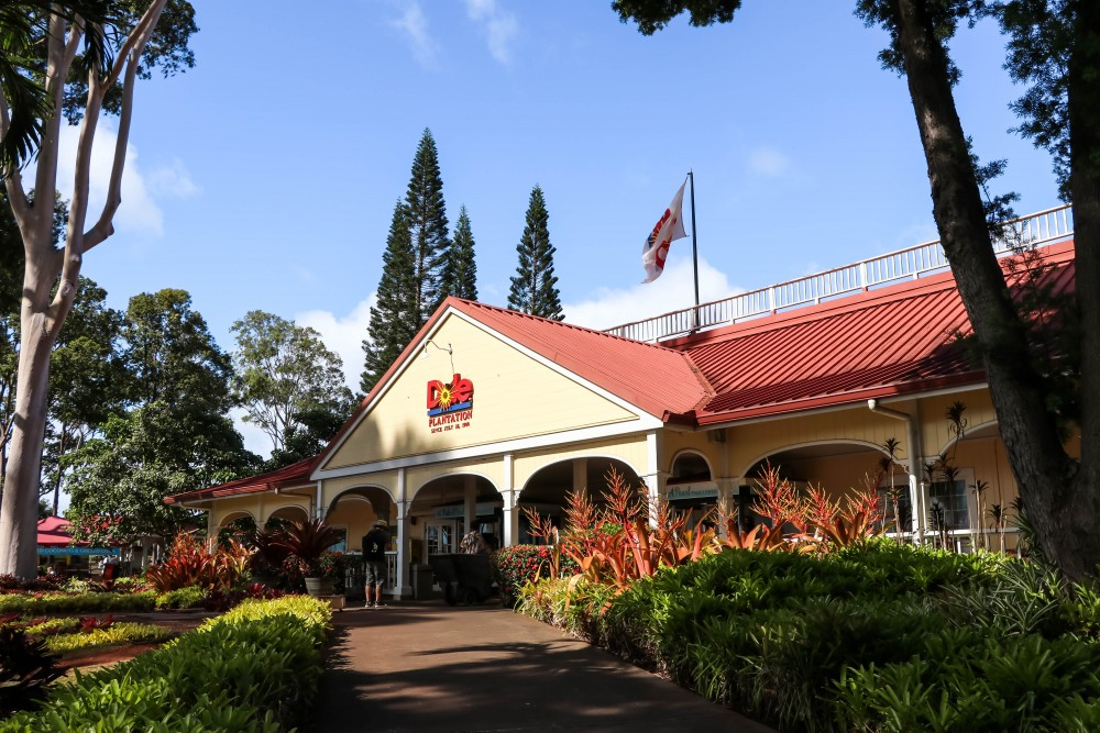 What you should know about visiting the Dole Plantation before you go so that you can make the most of your trip! #doleplantation #oahu #familytravel #oahuhawaii