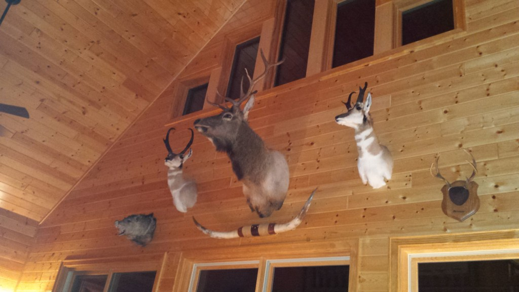heads on cabin wall
