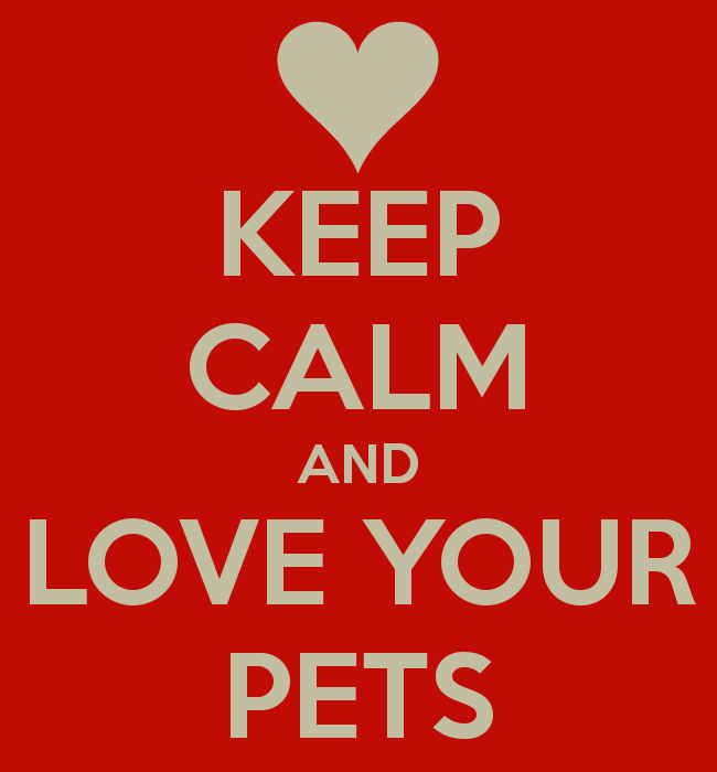 Making Everyday a Love Your Pet Day