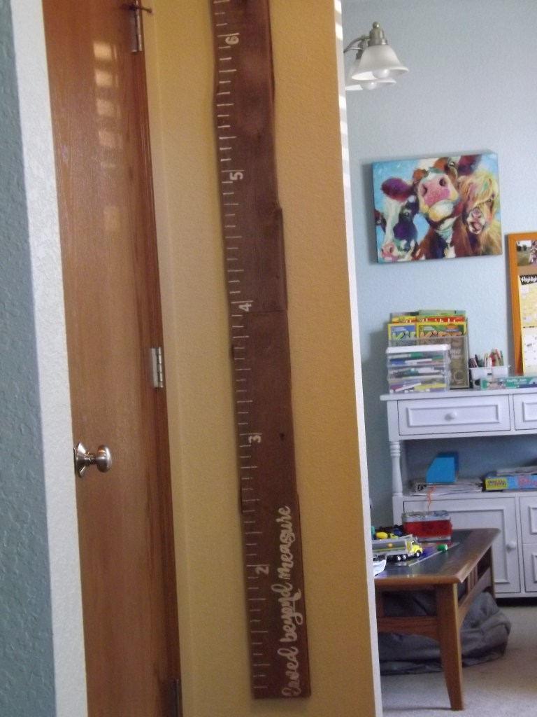 DIY Barn Wood Growth Chart