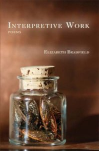 Bradfield_Interpretative_Work