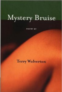 Mystery Bruise (Red Hen Press, 1999). Poetry.