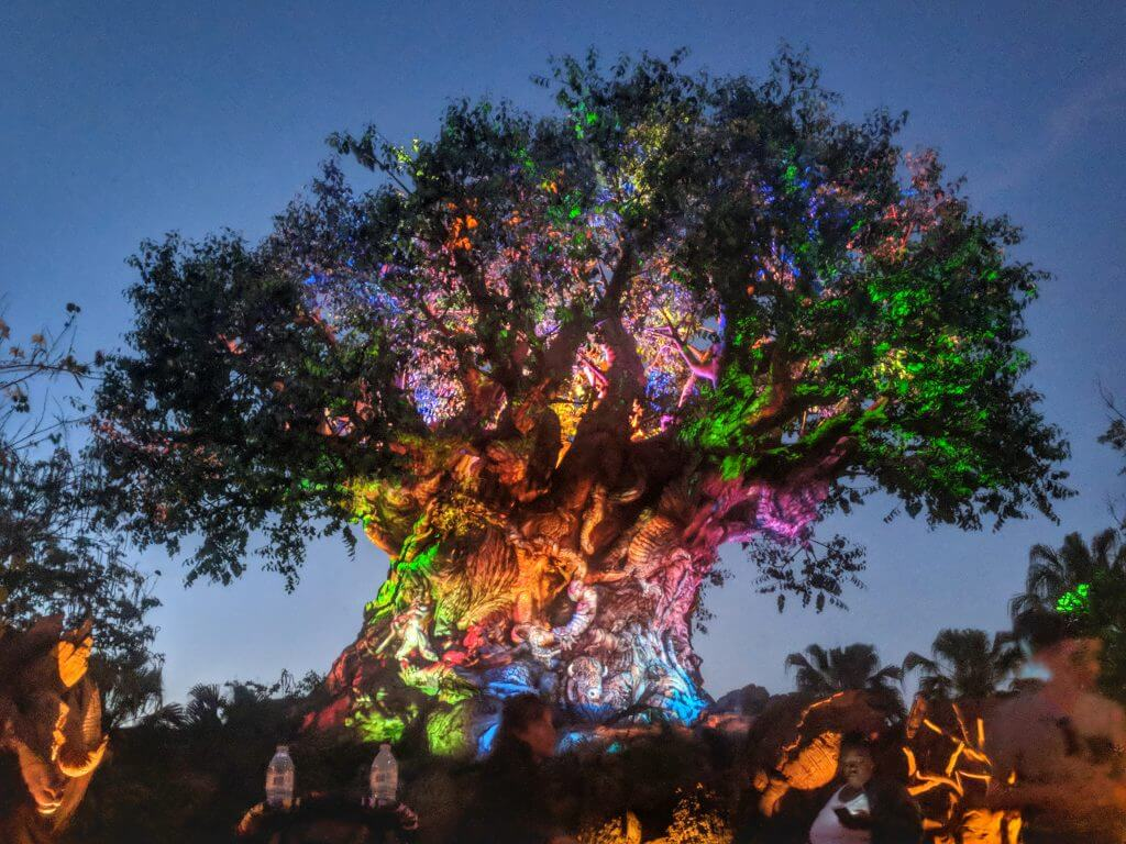 Exploring Animal Kingdom At Night What To See And Do