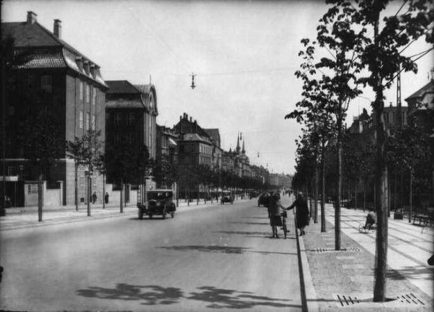 Frederiksberg Allé