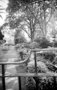 St. Chad's Graveyard