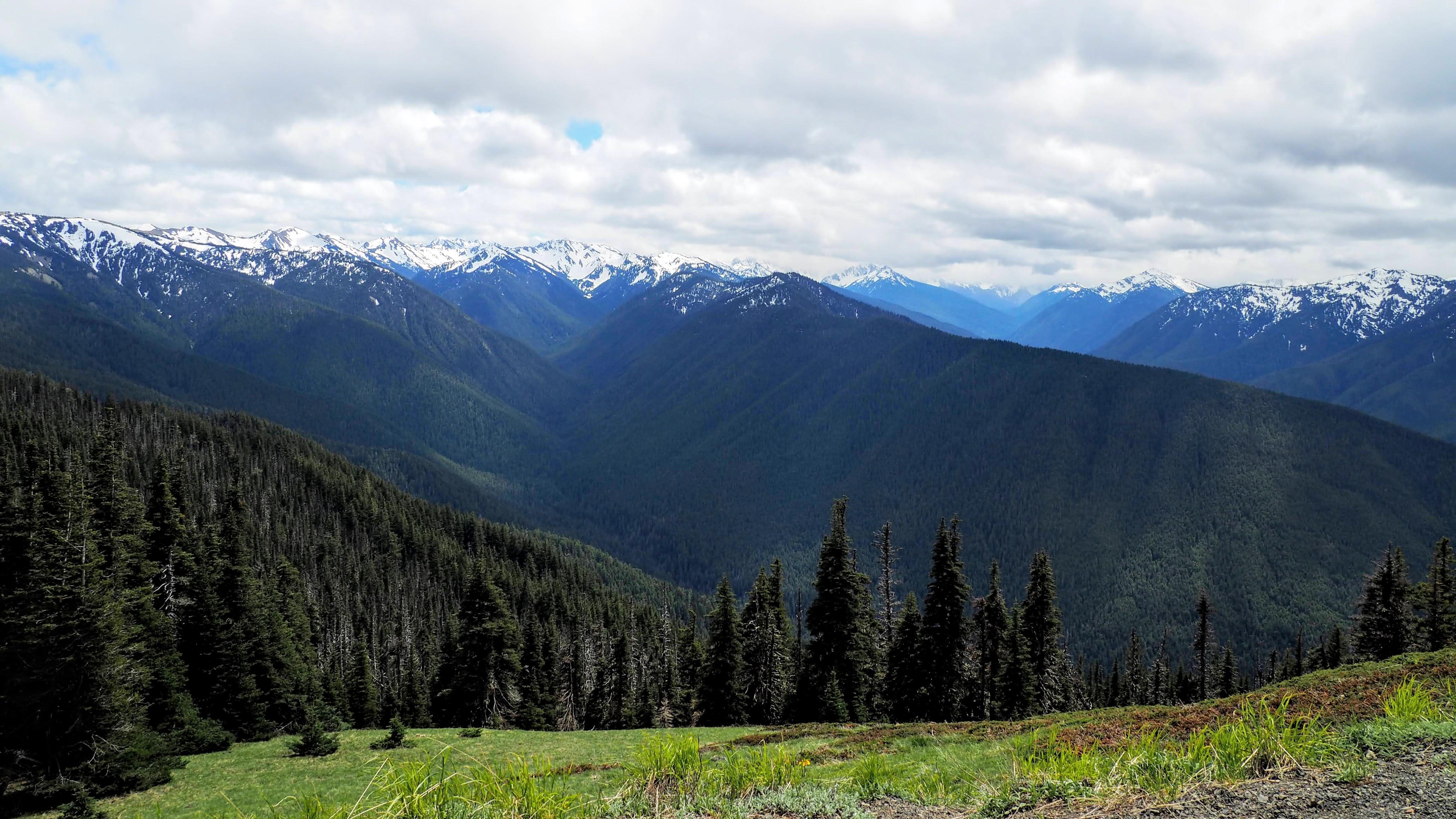 Olympic National Park – Hurricane Ridge