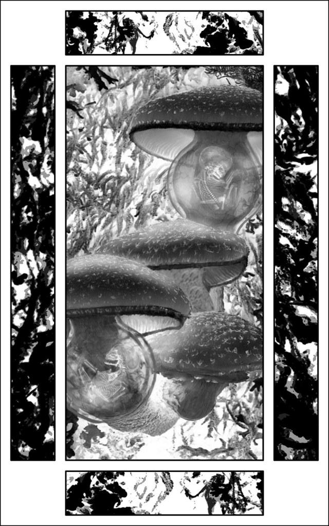 Haverhill House Publishing — Strange Seed by T.M. Wright (Interior Illustration #5)