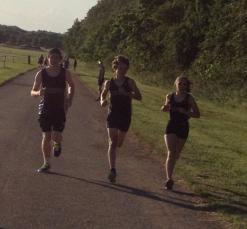 KH 3 runners