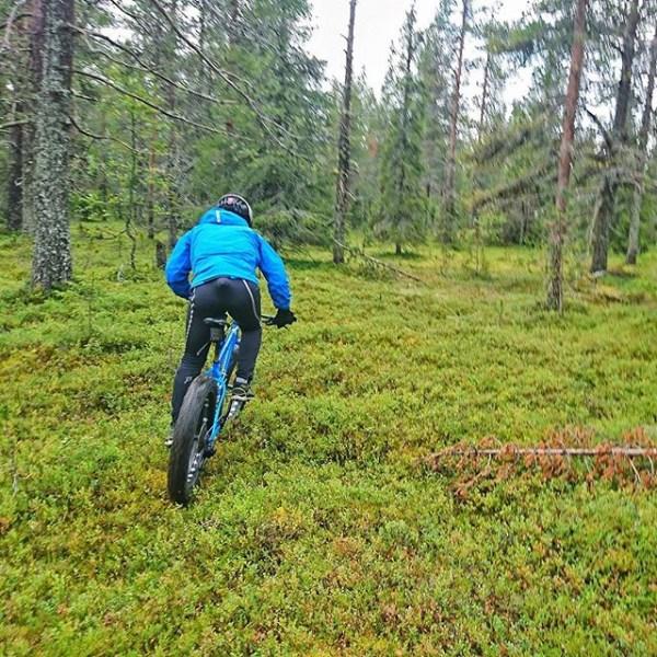 Senior Event Adviser Lystad ute og inspiserer de lapplandske skoger før verdenscup i slutten av november. Perfekt ski-o-terreng.