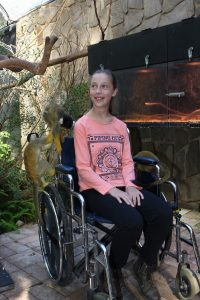 Adelaide Zoo - wheelchair access