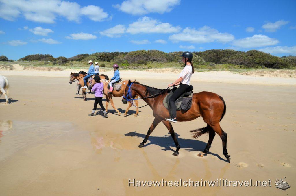 Pegasus Park Equestrian