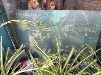 I found The Los Beatles in a bush