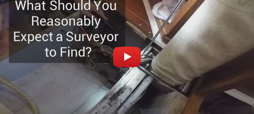 #56: What Should You Reasonably Expect a Surveyor to Find?