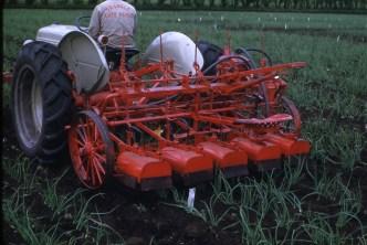 Onion cultivator