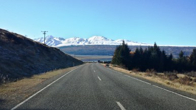 just-another-road-in-nz